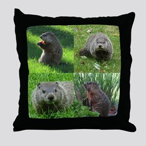 Groundhog medley Throw Pillow