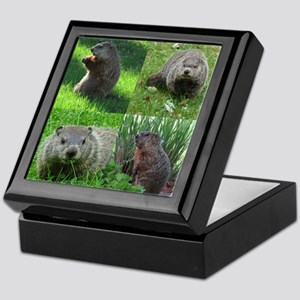 Groundhog medley Keepsake Box