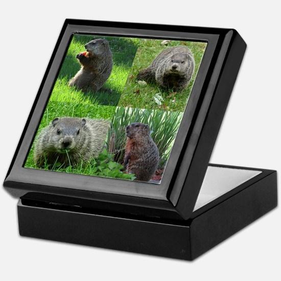 Groundhog medley Keepsake Box