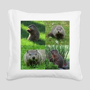 Groundhog medley Square Canvas Pillow