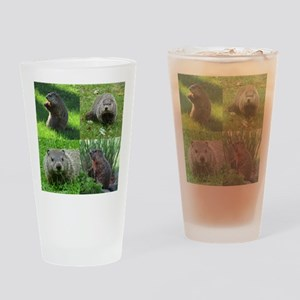 Groundhog medley Drinking Glass