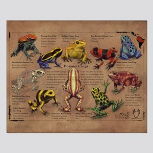 Poison Frogs Small Poster