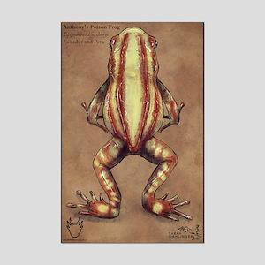 Anthony's Poison Frog Mini Poster Print