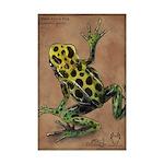 Mimic Poison Frog Mini Poster Print