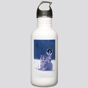 Husky puppies at play Stainless Water Bottle 1.0L