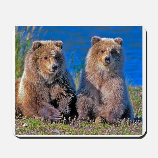 Grizzly twin Cubs Mousepad