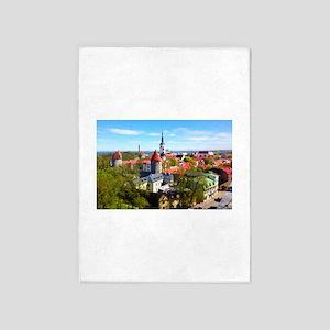 Tallinn 5'x7'Area Rug