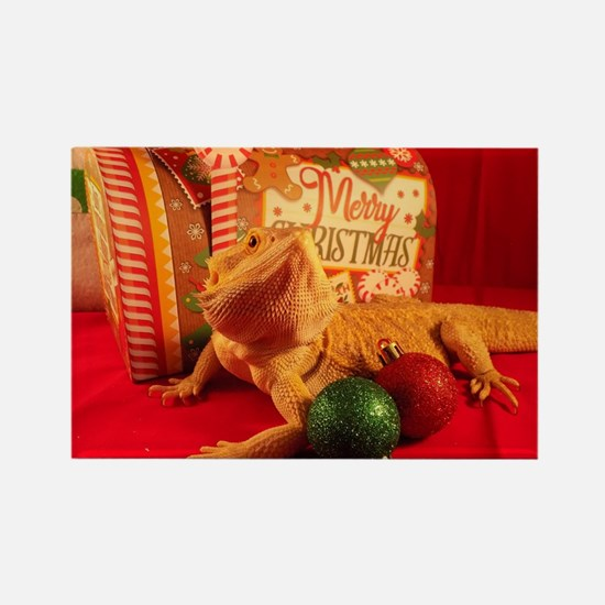 Cool Bearded dragon Rectangle Magnet