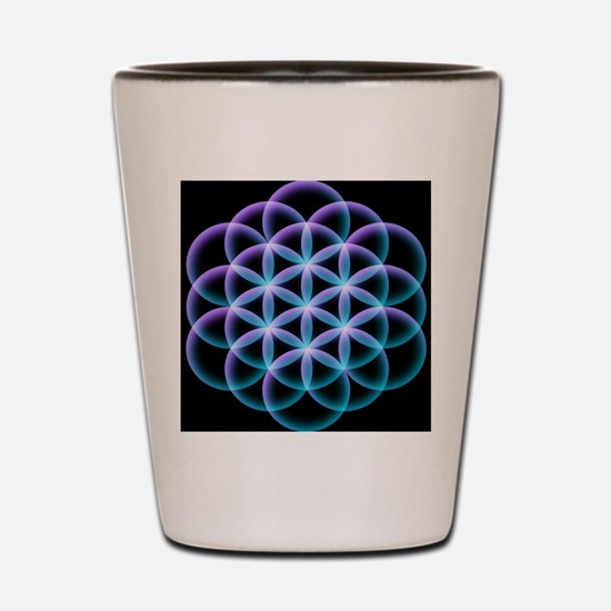 Funny Sacred geometry Shot Glass