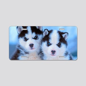 Husky puppies 4 Aluminum License Plate
