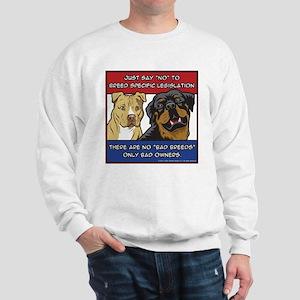 Anti-BSL Sweatshirt