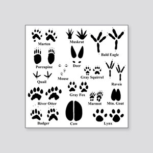 Animal Tracks Collection 1 Sticker