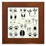 Animal Tracks Collection 1 Framed Tile