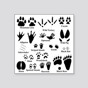 Animal Tracks Collection 2 Sticker