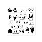 Animal Tracks Collection 2 Sticker