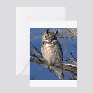 Owl40 Greeting Cards