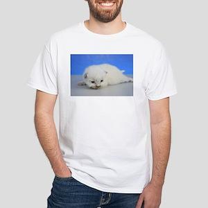Camilla - Ragdoll Kitten Seal Point T-Shirt