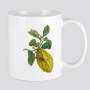 Lemon with Insects Mugs