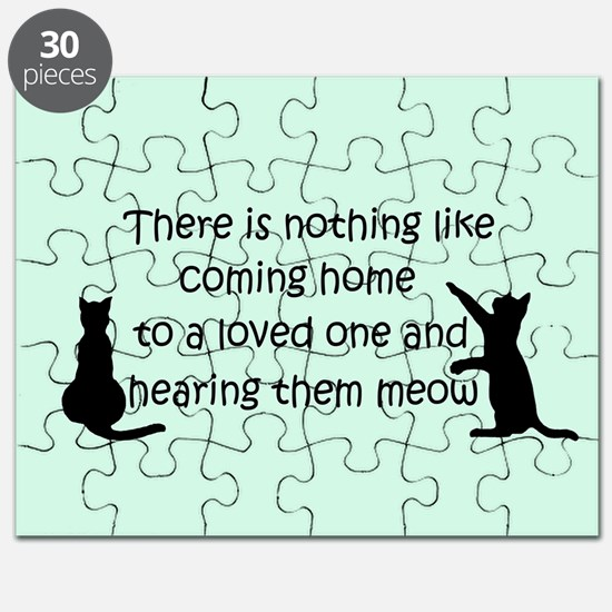 Coming Home to a Cat Puzzle