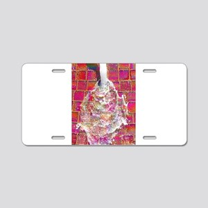 Stream With Color Aluminum License Plate