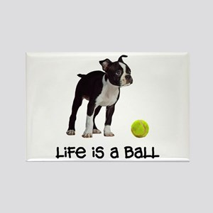 Boston Terrier Life Magnets