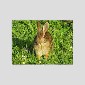 rabbit 5'x7'Area Rug
