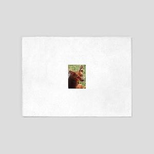 miniature pinscher 5'x7'Area Rug