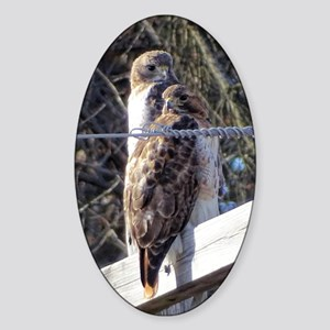 Red tail pair Sticker