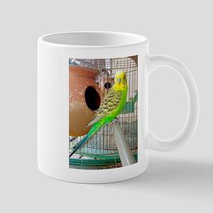 Lovely Adult male Budgerigar Mugs