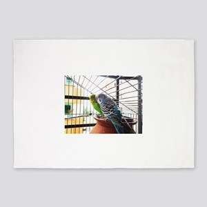 Budgerigar pair in a cage 5'x7'Area Rug