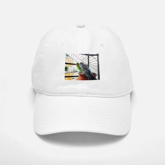 Budgerigar pair in a cage Baseball Baseball Cap