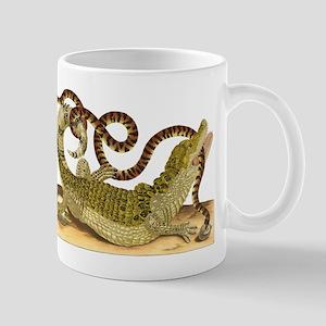 Caiman and False Coral Snake Mugs