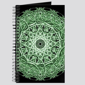 Organic Eye Mandala Journal