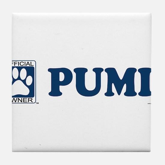 PUMI Tile Coaster