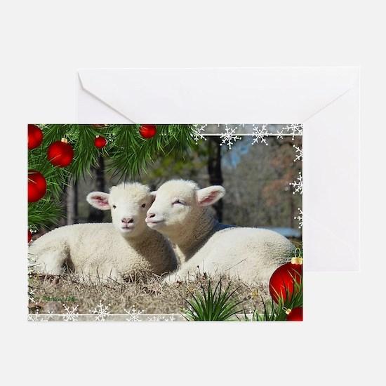 Holiday-Christmas Lamb Greeting Cards (10)