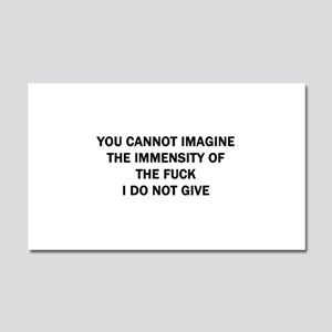 You Cannot Imagine Car Magnet 20 x 12