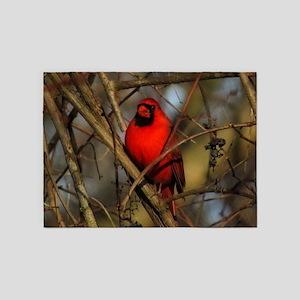 Cardinal 5'x7'Area Rug