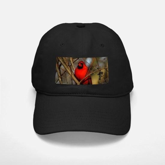 Cardinal Baseball Hat