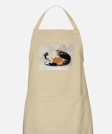 Tortoiseshell and White cat sleeping Apron