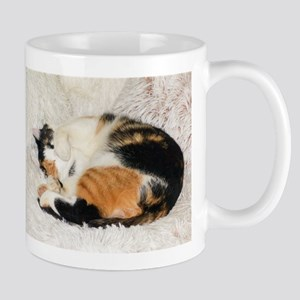 Tortoiseshell and White cat sleeping Mugs