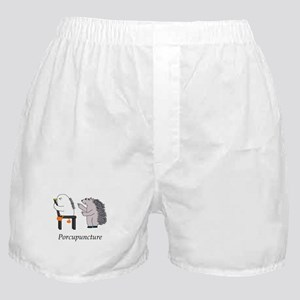 Porcupine Doctor Boxer Shorts