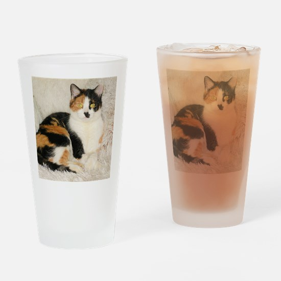 Unique Tortoiseshell cat Drinking Glass