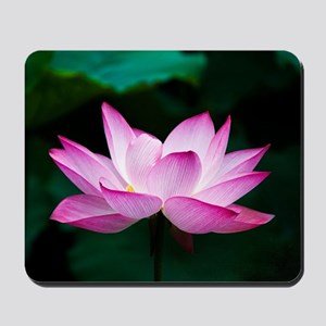 Lotus Blossom (Pink) Mousepad