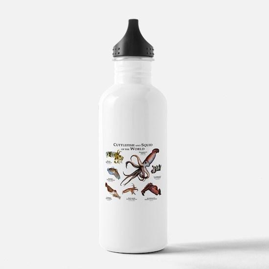 Cuttlefish & Squid of Water Bottle