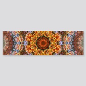 Grand Galactic Alignment Mandala Bumper Sticker
