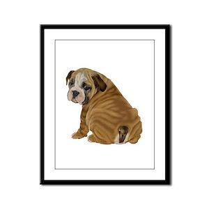 English Bulldog Puppy Framed Panel Print