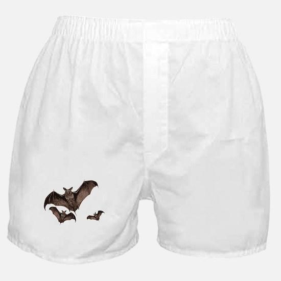 Bat Boxer Shorts