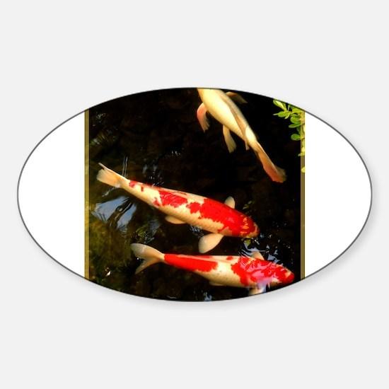 Koi! Fish photo! Decal