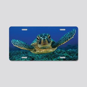 Turtle Swimming Aluminum License Plate