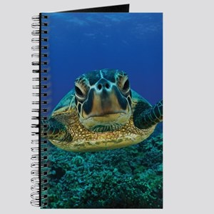 Turtle Swimming Journal